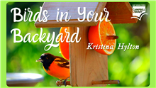 FB Event Birds in Your Backyard.png